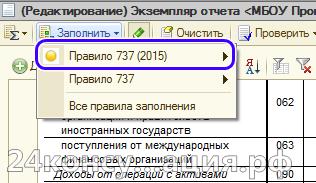 Вариант заполнения формы 737